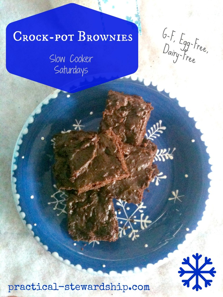 G-F, Egg-Free, Dairy-Free Crock-pot Brownies @ practical-stewardship.com