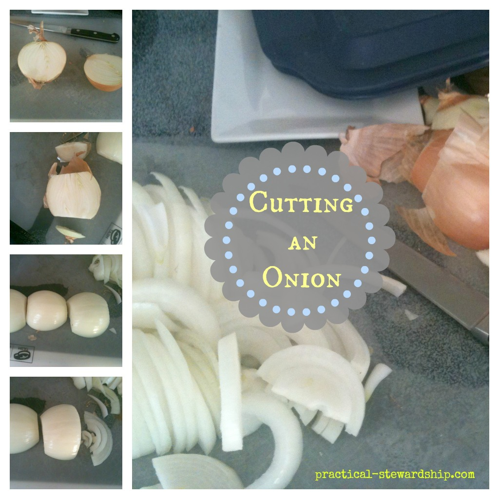 Cutting an Onion Collage @ practical-stewardship.com