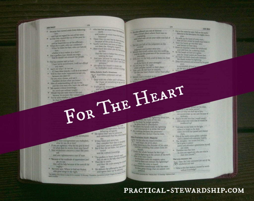 For the Heart @ practical-stewardship.com