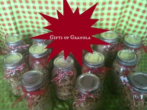Gifts of Granola @ practical-stewardship.com