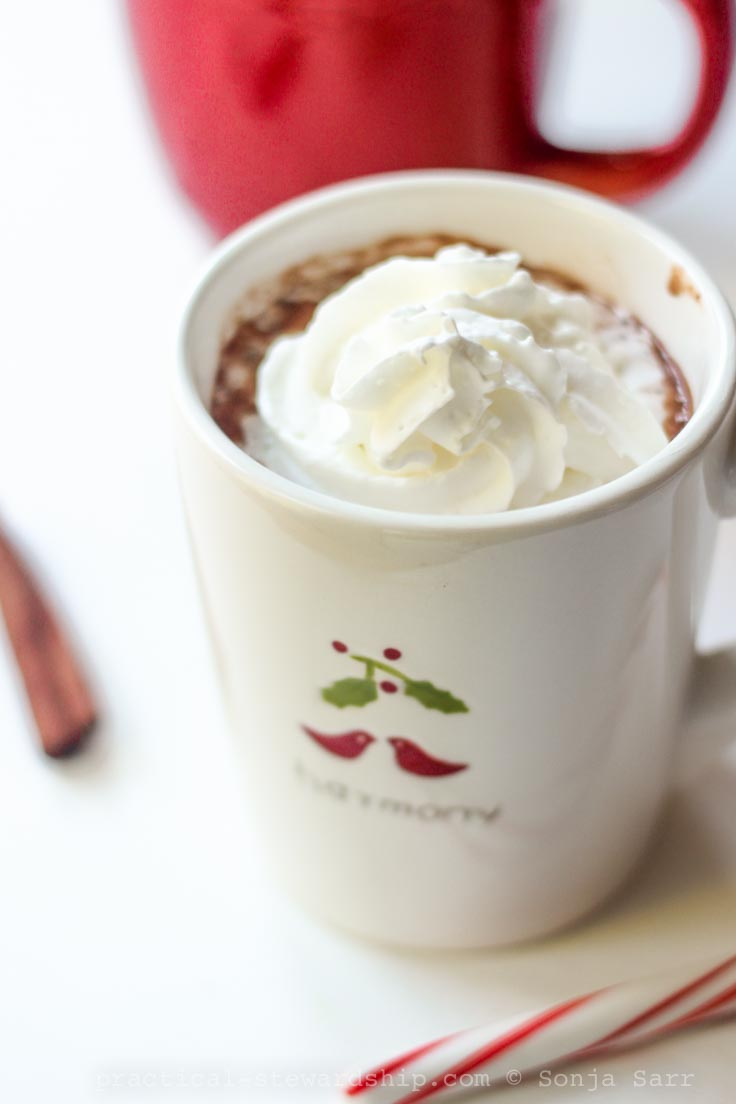Creamy Crock-Pot Hot Chocolate, Dairy-free, Vegan - Practical ...