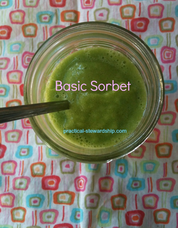 Green Basic Sorbet @ practical-stewardship.com