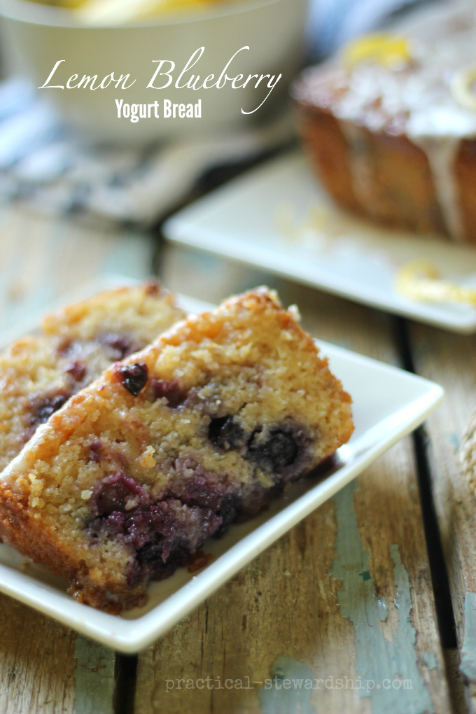 Lemon Blueberry  Yogurt Bread