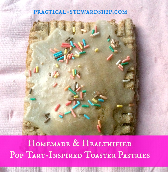 Pop Tart-Inspired Toaster Pastries @ practical-stewardship.com