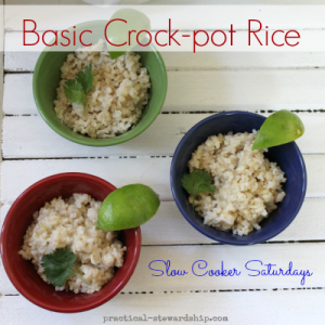 Basic Crock-pot Rice
