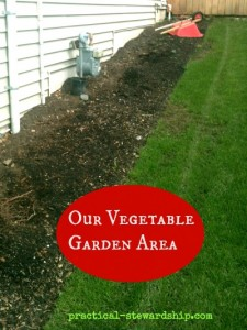 Our Vegetable Garden Area
