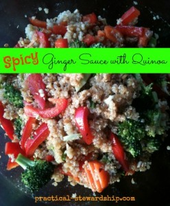 Spicy Ginger Sauce with Quinoa