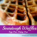 Sourdough Waffles, Egg-Free, Dairy-Free, Vegan