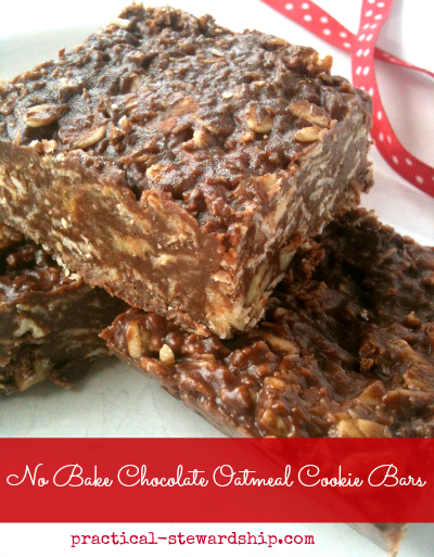 No Bake Chocolate Oatmeal Cookie Bars, Dairy-Free, Gluten-Free ...