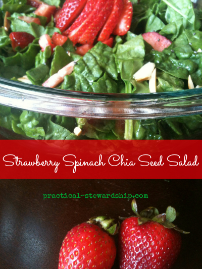 how to cook chia seeds for salad