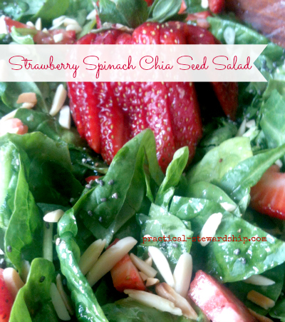 Strawberry Spinach Chia Seed Salad G-F, D-F