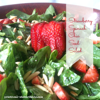 Strawberry Spinach Chia Seed Salad, G-F, D-F