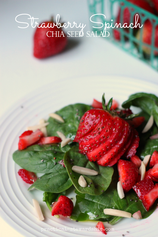 Strawberry Spinach Chia Seed Salad