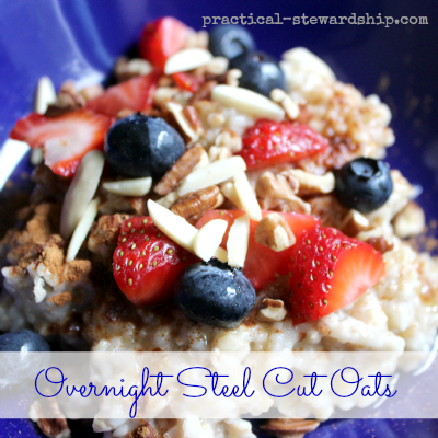 Overnight Crock-pot Steel Cut Oats