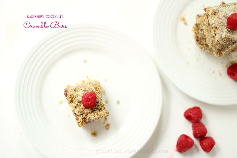 Raspberry Coconut Crumble Bars