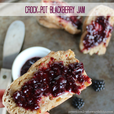 Crock-pot Blackberry Jam with Chia Seeds