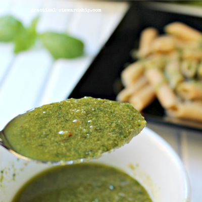 Poor Man's Vegan Basil Pesto - Practical Stewardship