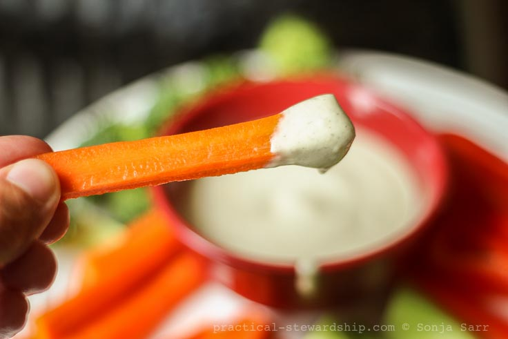Creamy Vegan Ranch Dressing