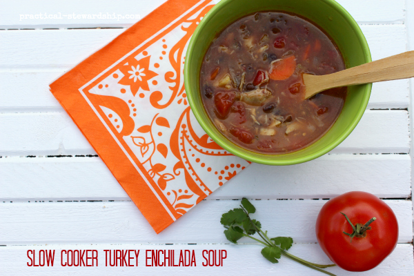 Slow Cooker Turkey Enchilada Soup