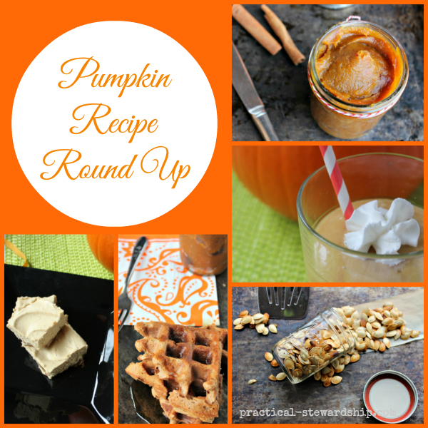Pumpkin Recipe Round Up