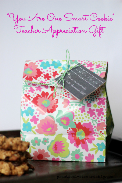 """You Are One Smart Cookie"" Teacher Appreciation Gift with Free Printable Tags"
