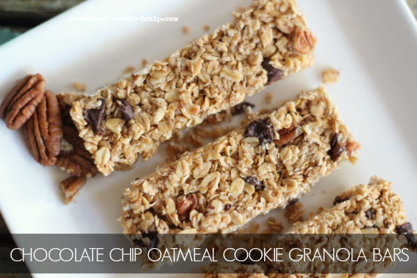 CHOCOLATE CHIP OATMEAL COOKIE GRANOLA BAR