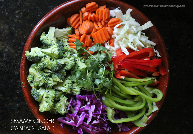 Sesame Ginger Cabbage Salad