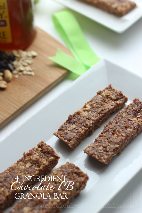 4 Ingredient No Bake Chocolate Peanut Butter Granola Bar
