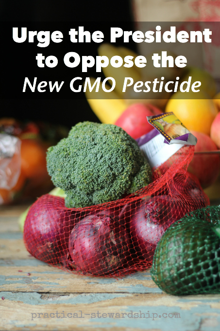 Urge the President to Oppose the New GMO Pesticide