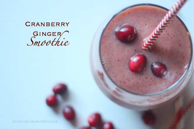 Cranberry Ginger SmoothieCranberry Ginger Smoothie