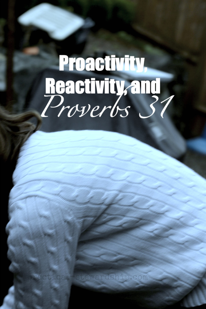 Proactivity, Reactivity, and Proverbs 31