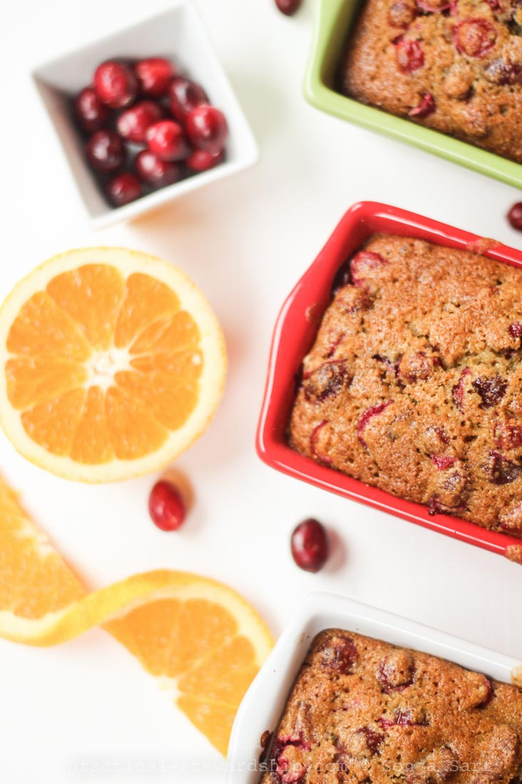 Dairy-free Cranberry Orange Bread-2