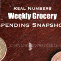 Weekly Grocery Spending Snapshot