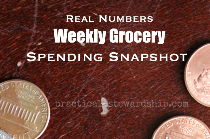 Weekly Grocery Spending Snapshot 2017
