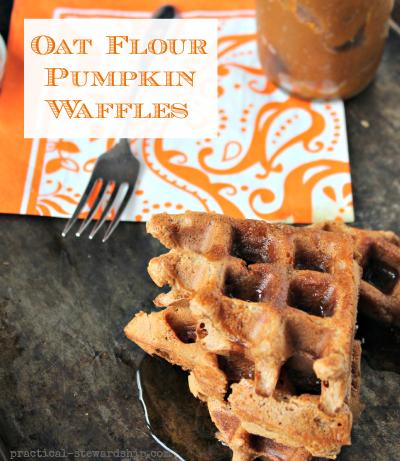 Oat Flour Pumpkin Waffles, Df, GF