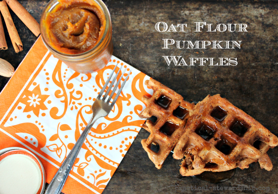 Oat Flour Pumpkin Waffles with Pumpkin Butter, GF, DF