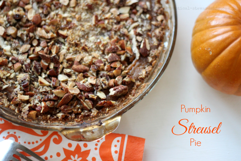 Pumpkin Streusel Pie, DF, GF
