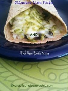 Cilantro Lime Pesto and Black Bean Burrito