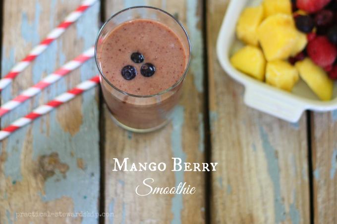 Mango Berry Smoothie
