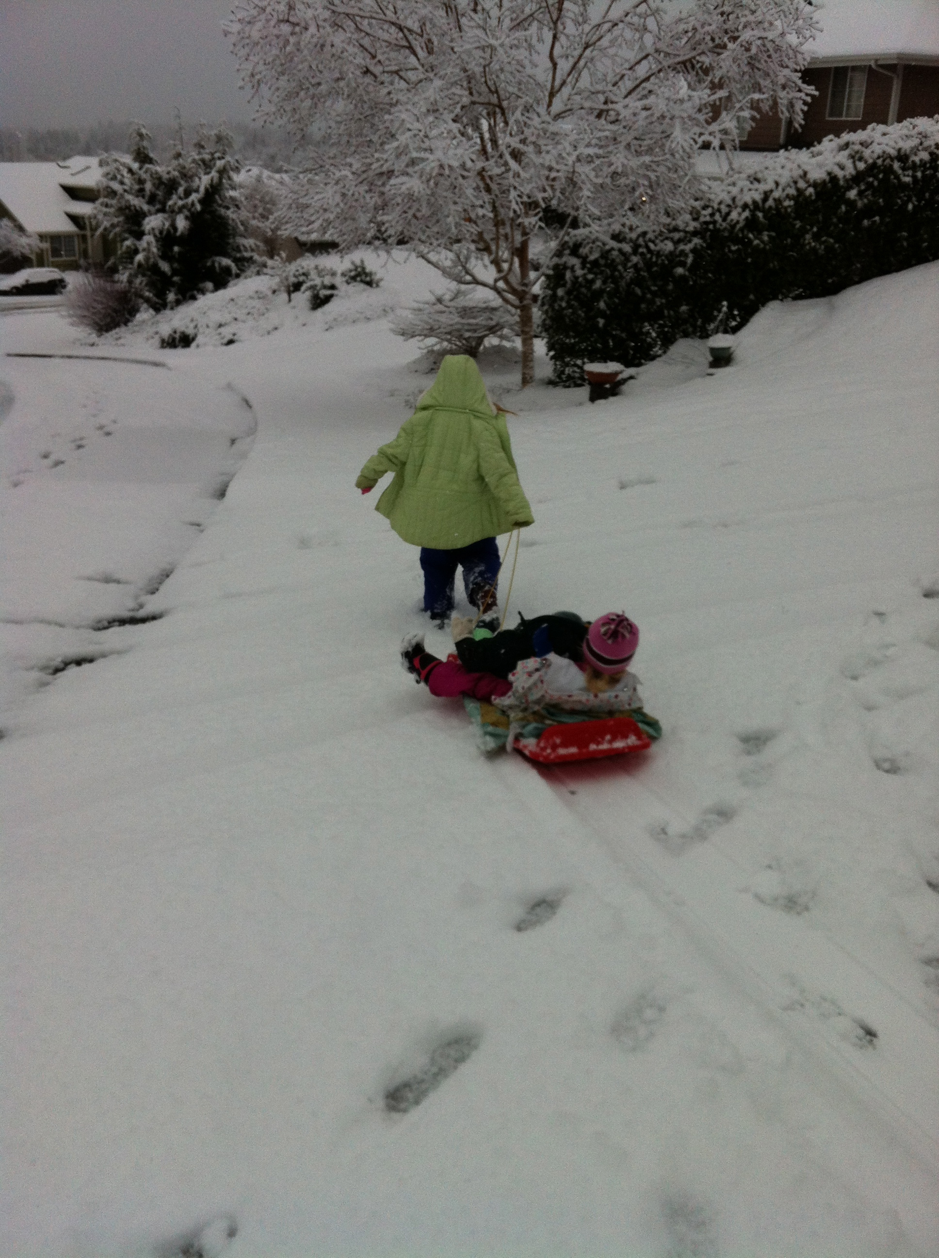 A Walk in the Snow – Practical-Stewardship Style