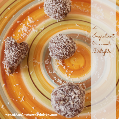 4 Ingredient Coconut Delight Balls Lara Bar