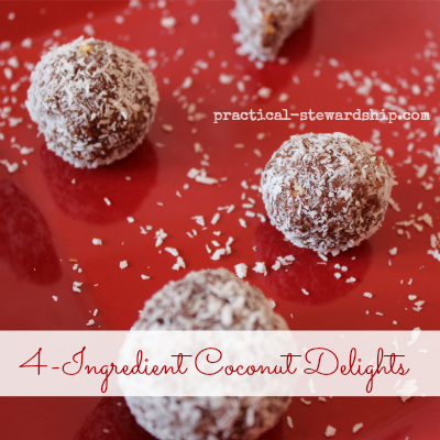 4 Ingredient Coconut Delight Balls