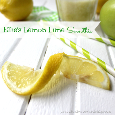 Ellie's Lemon Lime Smoothie with a Twist