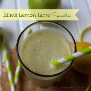 Lemon and Lime Smoothie