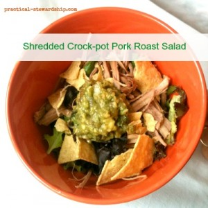 Shredded Crock-pot Pork Roast Salad