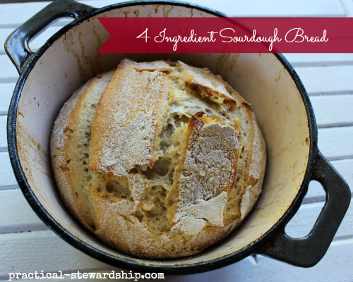 4 Ingredient Sourdough Bread