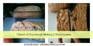 Double Sourdough Bread @ practical-stewardship.com