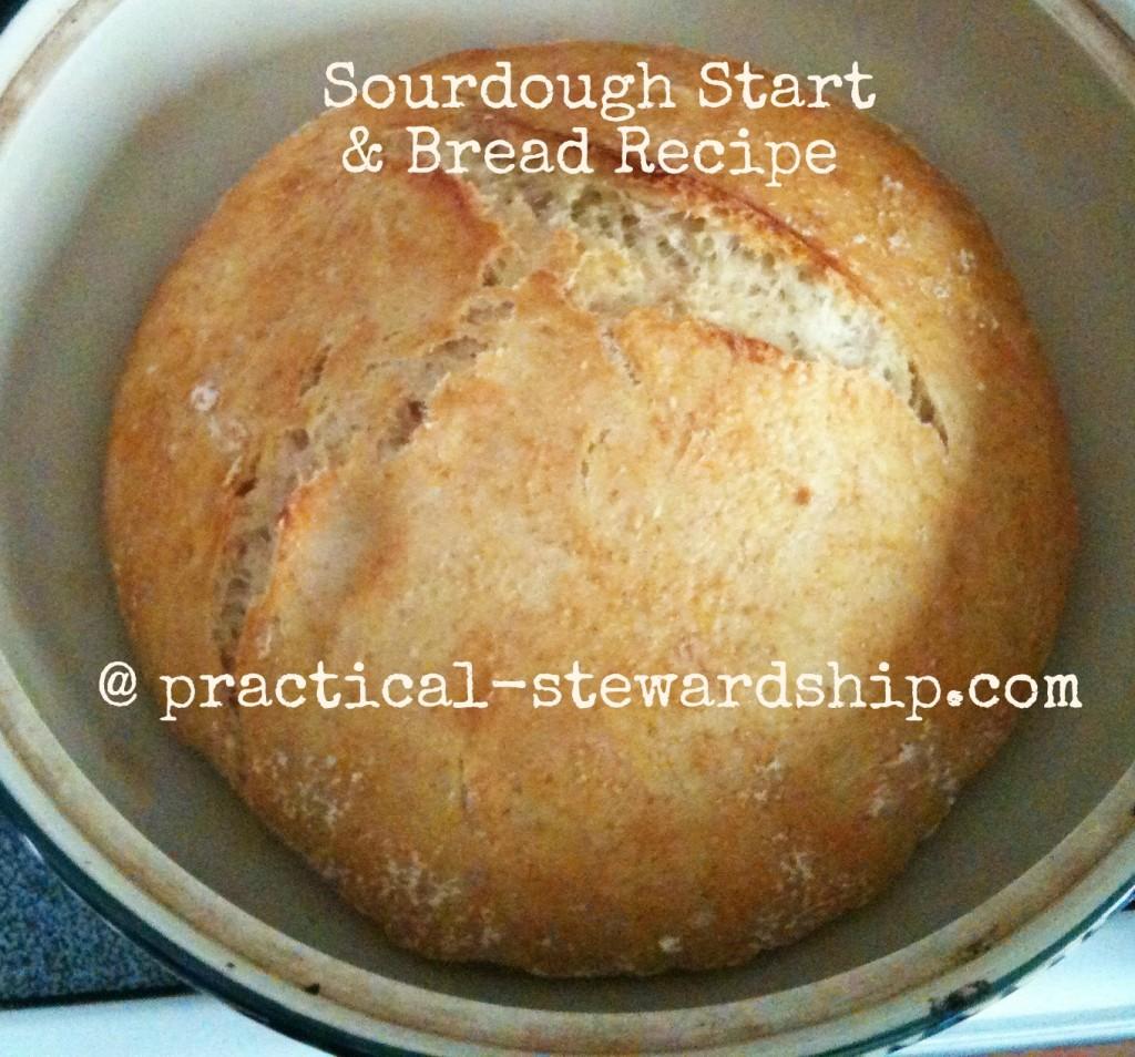Sourdough Starter And Basic 3 Or 4 Ingredient Sourdough Bread