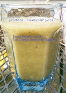 Sweet Smoothie with 6 Hidden Veggies & Greens @ practical-stewardship.com