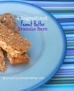 Peanut Butter Granola Bars @ practical-stewardship.com